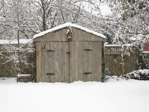 garden shed nov. 25, 2010