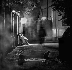 Shadow in the lane (dragonroy) Tags: city cats night standing dark photography mono alley shanghai expression smoke fineart lane figure deviantart backlane shadowman thedarkside royfrankland canong12