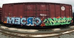 MecroDraft (everkamp) Tags: seattle railroad panorama graffiti washington trains panoramic stitched freight bnsf boxcars draft cdc rollingstock railart mecro benching