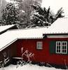 sneeuw-wit , ijskoud (Maup Smits  en zijn foto's) Tags: de met wat ijs sneeuwvlokken