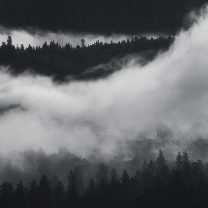 Oakhurst Fog 2