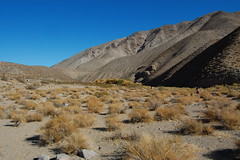 DeathValley_CtoM_056 Photo