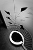 Calder (Kaunokainen) Tags: summer blackandwhite bw building art portugal scale museum stairs europa europe artist estate lisboa lisbon interior capital bn belem calder museo cultural biancoenero ccb lisbona portogallo artexhibition iberianpeninsula centroculturaldebelém installazione penisolaiberica centroculturale