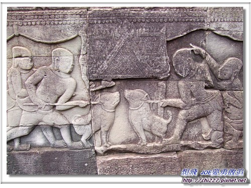 吳哥城-鬥豬雕刻