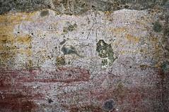Pompeii Graffiti (Curtis Gregory Perry) Tags: italy horse penis graffiti nikon grafitti grafiti pompeii vesuvius klotter d300      bandalismo     coretan  graift mbishkrime