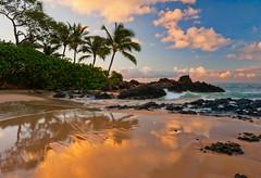 Wet Sand at Secret Beach (mojo2u) Tags: morning beach sunrise hawaii pacific cove secretbeach maui mauihawaii makenacove nikon2470mm nikond700