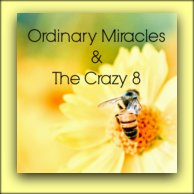 Ordinary Miracles & The Crazy 8