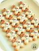 Mini Karate Kids (Sweet Pudgy Panda) Tags: cookies sugar karate picnik sweetpudgypanda