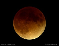 Get Ready for the Solstice Lunar Eclipse! (NAS...