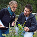 Biology majors study in a blueberry patch