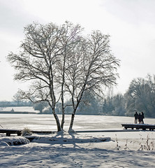 Still ruht der See (dorena-wm) Tags: schnee winter light shadow people sun white lake snow tree landscape bayern bavaria see licht leute menschen landschaft sonne weiss schatten baum oberland weilheim pfaffenwinkel dietlhofersee mygearandmepremium mygearandmebronze mygearandmesilver mygearandmegold dorenawm httpballoonaprivatthumbloggercom