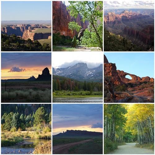 2010 Best Landscapes