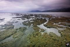 ... ([ Rodelicious ]) Tags: seascape moss rocks philippines coastal aurora dingalan cokinzpro bwcpl matawe bwnd106 cokinzpro09gnd gettyimagesphilippinesq1 gettyimagesasia gettyimagesphilippines