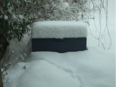 Ein bisschen mehr Schnee...