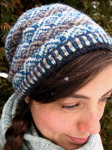 Frozen herrin in the snow