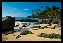Waimea Bay (AlpineEdge) Tags: ocean travel vacation beach beautiful point hawaii bay sand rocks surf oahu palmtrees northshore waimea algae
