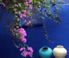 Cntaros y Flores (Sita28) Tags: pink blue india flower color colour azul garden ventana asia flor jardin rosa pottery udaipur composicion buganvilla cntaros superaplus aplusphoto mygearandmepremium mygearandmebronze mygearandmesilver mygearandmegold mygearandmeplatinum