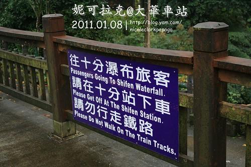 石碇2011-01-08-019