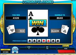 free Dolphin Coast gamble win