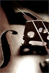 una parte di me di cui pochi sono a conoscenza ormai... e ancora meno sono quelli che riescono a comprenderla. (L *) Tags: light music macro nikon bokeh explore violin musica instrument luce violino d60 classica strumento 1855vr goldstaraward