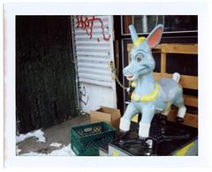 Mechanical Donkey (Alexander Rabb) Tags: nyc snow film brooklyn polaroid fuji ride donkey instant boroughpark landcamera instantfilm fujifp100c polaroidlandcameraautomatic103 polaroid114mmf88