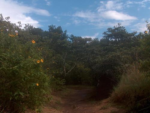 Sendero Las Pailas
