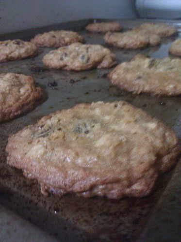 Oatmeal chocolate chip cookies by kel h