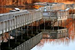foot bridge reflection (hmb52) Tags: philadelphia pennsylvania atlantic saltwater delawareriver freshwater darbycreek tidalmarsh bridgefoot mirrorser superstarthebest tinicummarsh