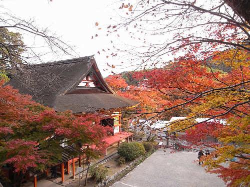 談山神社(紅葉)@桜井市-14