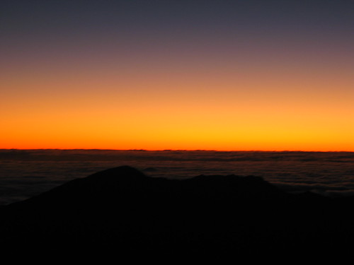 inspiration for the Haleakatini