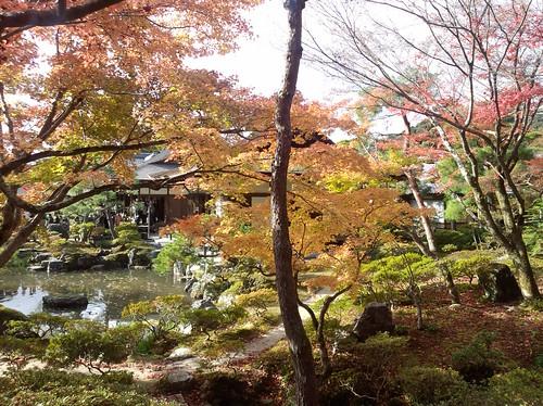 秋の京都 F-01Cにて