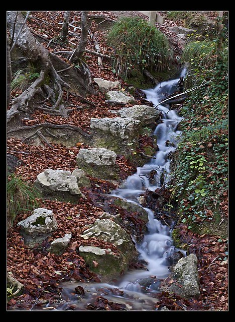 torrente de otoño