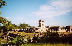 Mexické zastavení 4Palenque, po stopách starých Mayů
