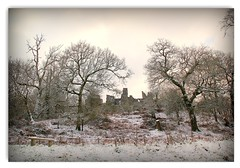 Wintry Dinefwr Castle (EionaR. [busier than ever]) Tags: snow wales carmarthenshire picnik wfc dinefwrpark