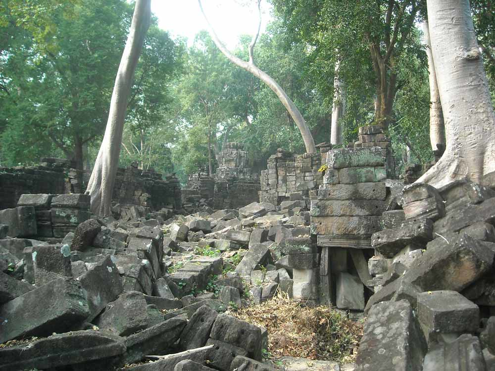 Trees and ruins, Banteay Chhmar, Cambodia