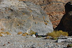 DeathValley_CtoM_158 Photo