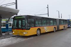20101203_090425