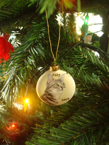 Abby's Ornament