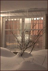 Snow drifting in the window (listentothemountains) Tags: winter snow ontario storm london window night soft peace pastel snowstorm even blizzard icicles dumping msh1210 msh12102