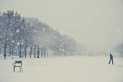 Paris et parisiens sous la neige (DSC_3124) (iulian nistea) Tags: street snow paris france strada neige rue jardindestuileries ninsoare