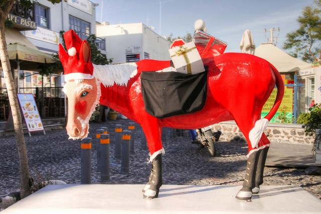 Santa's Donkey