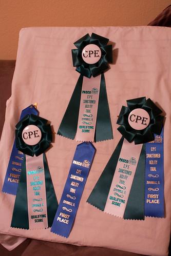 CPE Trial Dec 2010-13
