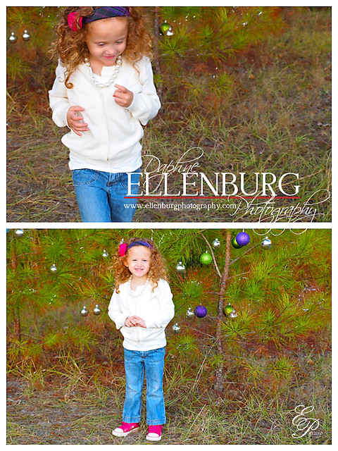 BLOG 112010 ELLENBURG 2