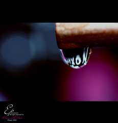 [EXPLORED] (Ebtisam AlOtaibi) Tags: macro canon photography rebel focus drop nora xs 2010 wate noura 2011 ebtisam
