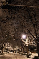 Brrrr! (lucia.dziakova) Tags: nightphotography winter urban italy snow night lights italia nightshot places neve nightshots nightphoto zima dicembre paesaggi notte luce italie marche paesaggio notturne italians citt italiano urbane nevicata ancona italiani passetto fotonotturne dicember snih canonphotography fotografianotturna scattinotturni senzaflash winter2010 laneve canoniani scattonotturno italianflickr fotourbane fotografimarchigiani snow2010 neve2010 dicembre2010 neveadancona nocnifotky laneveadancona neveinancona neveadancona2010 snowintheancona2010 neveanconadicembre2010 nevenellemarche marcheneve nevemarche laneve2010 snih2010 nevicataancona neveadanconadicembre2010 snowintheitaly snowintheitaly2010 neveanconaitalia nevenellemarche2010 nevenellemarchedicembre2010