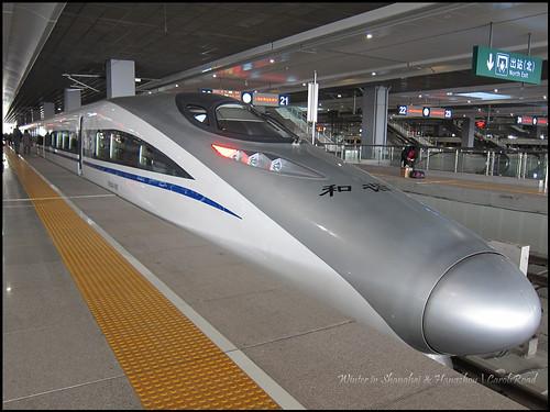 2010-12-08 Shanghai 023P04