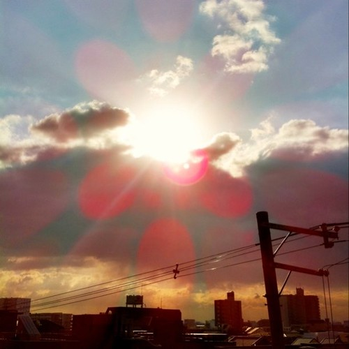 今日の写真 No.109 – 昨日Instagramに投稿した写真(5枚)/iPhone4 + Photo fx、CAMERAtan