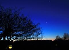 Morning Star (Time Grabber) Tags: tree venus rooftops earlymorning bluesky planet penarth risingsun crescentmoon morningstar timegrabber