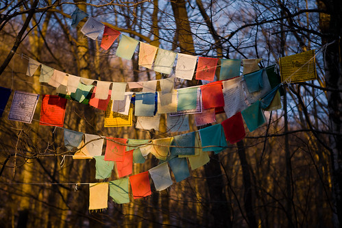 Prayer flags in early morning light