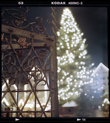Christmas Tree (christian.senger) Tags: christmas city winter light brown black tree 6x6 film night analog vintage fence mediumformat germany geotagged europe dof kodak bokeh availablelight steel decoration rusty christmasmarket weihnachtsmarkt squareformat marketplace pentacon six portra abundance ulm lightroom chainoflights silverfast christiansenger:year=2010 photostudio13 gettyholidays2010 osm:way=4613218